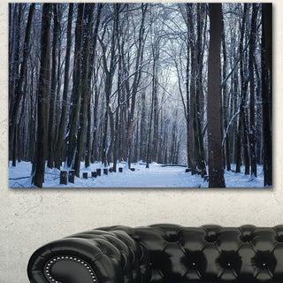 Designart 'Thick Woods in Winter Forest' Modern Forest Canvas Art