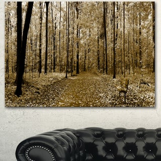 Designart 'Wooded Forest Panoramic View' Modern Forest Canvas Art