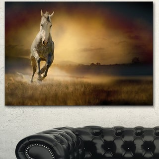 Designart 'Horse Galloping Through Valley' Large Animal Art on Canvas