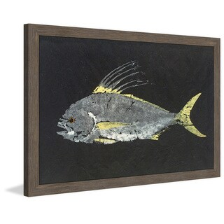 Marmont Hill - 'Roosterfish' by Warren Sellers Framed Painting Print