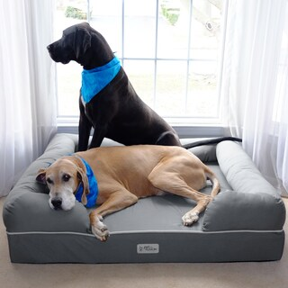 PetFusion Ultimate Dog Bed and Lounge with Premium Memory Foam Base (As Is Item)