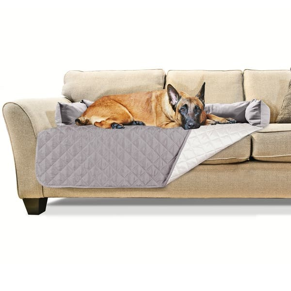 Groovy Shop Furhaven Sofa Buddy Pet Bed Furniture Cover Free Ocoug Best Dining Table And Chair Ideas Images Ocougorg