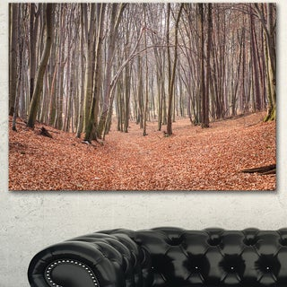 Designart 'Leaves in the Thick Fall Forest' Large Forest Canvas Art
