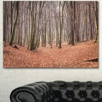 Designart 'Leaves in the Thick Fall Forest' Large Forest Canvas Art - Brown