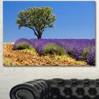 Designart 'Lone Green Tree in Lavender Field' Large Landscape Canvas Art