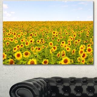 Designart 'Beautiful Sunflowers Garden' Flower Canvas Print Artwork