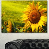 Designart 'Tuscany Sunflowers on Green' Modern Floral Wall Artwork - Green