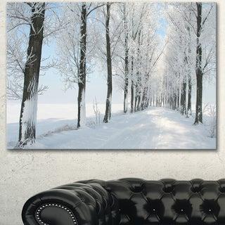Designart 'Beautiful Winter Forest Lane Photo' Large Forest Artwork Canvas - White