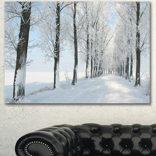 Designart 'Beautiful Winter Forest Lane Photo' Large Forest Artwork Canvas - White