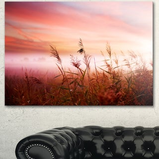 Designart 'Foggy Land with Early Morning Mist' Landscape Artwork Canvas Print - Red