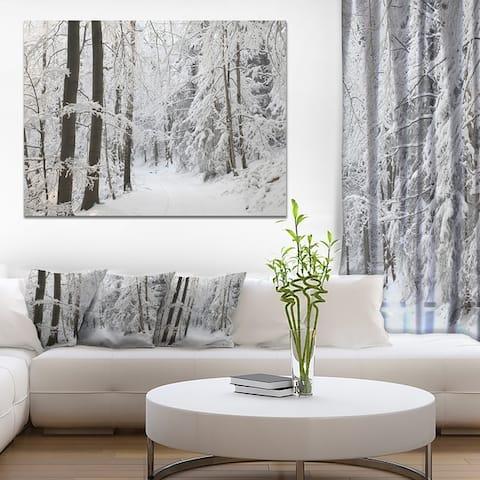 Designart 'Dense Winter Forest and Lane' Large Forest Artwork Print on Canvas - White