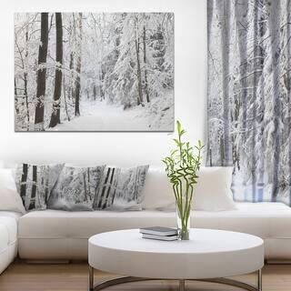 Designart 'Dense Winter Forest and Lane' Large Forest Artwork Canvas - White