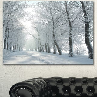 Designart 'Winter Country Lane on Frosty Morning' Large Forest Artwork Canvas - White