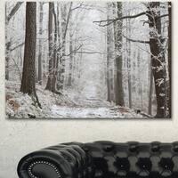 Designart 'Forest Trail on Winter Morning' Large Forest Artwork Canvas