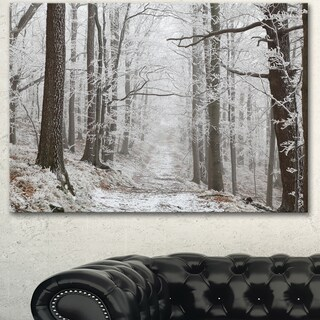 Designart 'Forest Trail on Winter Morning' Large Forest Artwork Canvas - White
