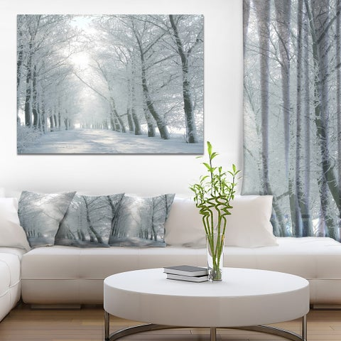 Winter Road Backlit my Morning Sun' Modern Forest Canvas Wall Artwork - White