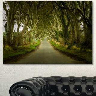 Designart 'Dark Hedges Road through Old Trees' Landscape Wall Artwork Canvas