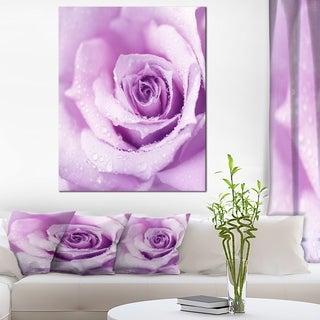 Designart 'Purple Wet Rose Background' Flowers Canvas Wall Artwork - Purple (4 options available)