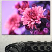 Designart 'Colorful Autumnal Chrysanthemum' Floral Canvas Artwork Print - Pink