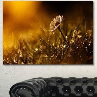 Designart 'Vintage Wild Flower In Sunset' Modern Flower Canvas Wall Artwork