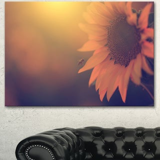 Designart 'Vintage Photo Of Sunflower Close-up' Large Flower Canvas Art Print