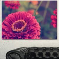 Designart 'Vintage Photo of Cute Red Flowers' Large Flower Canvas Art Print
