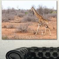 Designart 'Giraffe Walking through African Forest' Modern Animal Canvas Wall Artwork - Brown