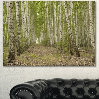 Designart 'Dense Birch Grove in Summer Day' Modern Forest Canvas Wall Artwork - Green