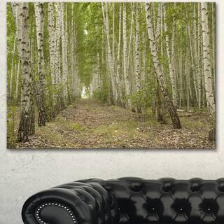 Designart 'Dense Birch Grove in Summer Day' Modern Forest Canvas Wall Artwork - Green