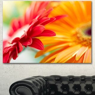 Designart 'Red and Yellow Daisy Flower' Modern Floral Wall Artwork