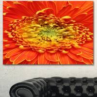 Designart 'Beautiful Gerbera Flower In Brig' Modern Floral Wall Artwork - Red
