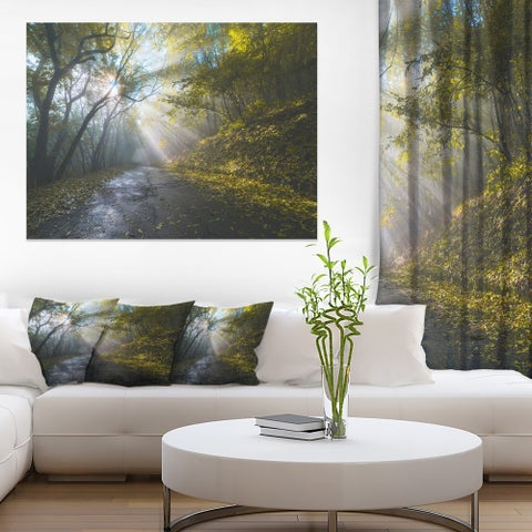 Road in Autumn Forest at Sunset' Large Landscape Art Canvas Print - Green