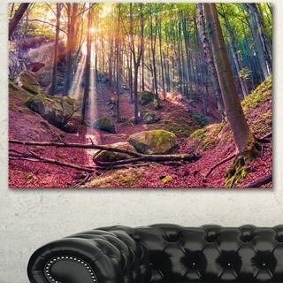Designart 'Autumn Morning in Mystical Woods' Large Landscape Art Canvas Print