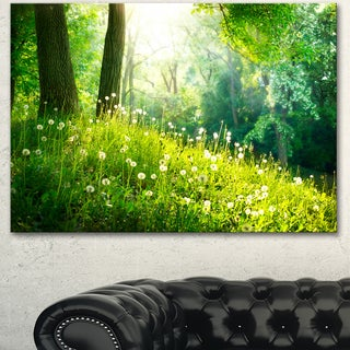 Designart 'Beautiful Green Grass and Trees' Large Landscape Art Canvas Print