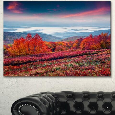 Designart 'Autumn in the Carpathian Mountains' Landscape Artwork Canvas Print - Purple