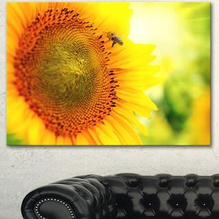 Designart 'Sunflower Blooming on Field' Large Animal Canvas Wall Art Print
