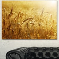 Designart 'Golden Wheat Field ' Landscape Wall Art Print Canvas - GOLD