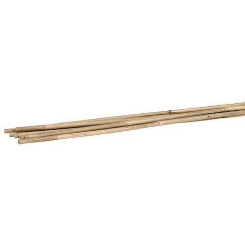 Woodstream/Victor BB6 6' Bamboo Plant Stakes 6 Count
