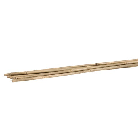 Woodstream/Victor BB5 5' Bamboo Plant Stakes 6 Count