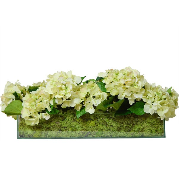 Cream Hydrangeas and Green Moss Silk Plants in Rectangular Glass Container