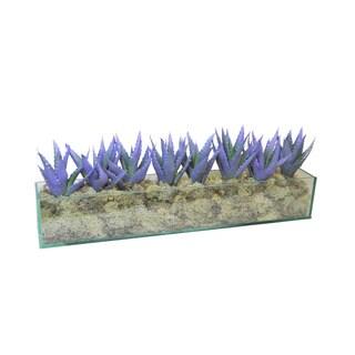 Blue Silk Agave in Rectangular Glass Planter