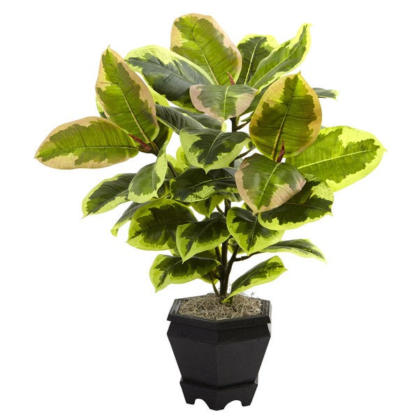 Shop Nearly Natural Variegated Rubber Leaf With Planter