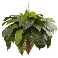 Nearly Natural Giant Bird's Nest Fern with Cone Hanging Basket