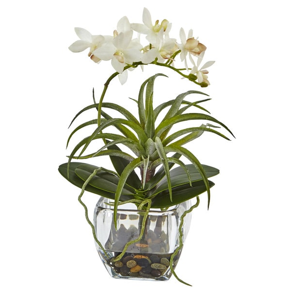 """Nearly Natural Orchid and Succulent Arrangement - Green - 13""""h x 6""""w x 6""""d"""
