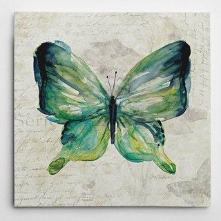 Wexford Home Carol Robinson 'Butterfly Sketch II' Wrapped Canvas