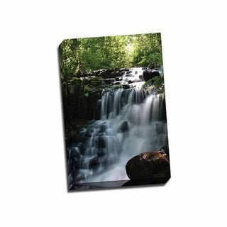 Picture It on Canvas 'Falls in the Forest II' Wrapped Canvas Artwork