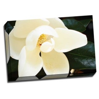 Picture It on Canvas 'Southern Magnolia I' Multicolored Wrapped Canvas Artwork