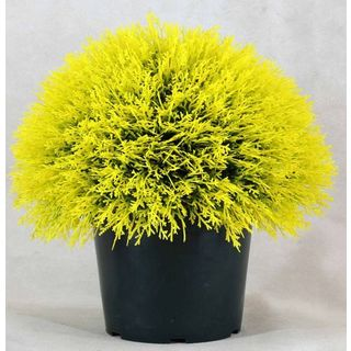 Golden Juniper 15-inch Artificial Bush in Green Pot