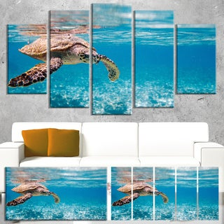 Designart 'Large Hawksbill Sea Turtle' Animal Wall Art Print