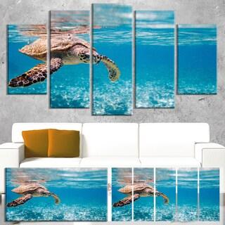 Designart 'Large Hawksbill Sea Turtle' Animal Wall Art Print